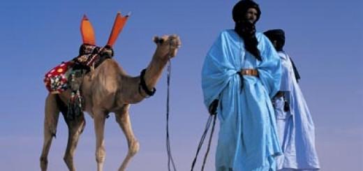 camel385_423159a