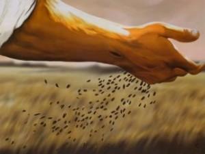 sowingseed