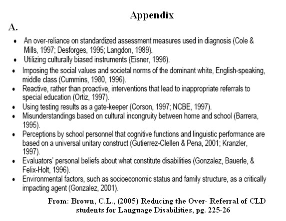 Essay appendix or appendices