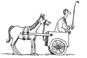 horse-cart-759743