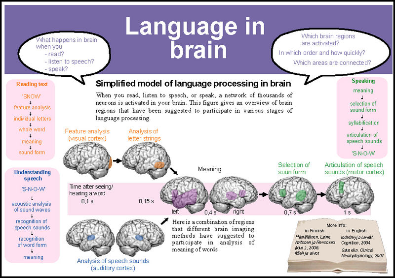 how does language used by same How does asl compare with spoken language how do most children learn asl why emphasize early language learning in spoken language, words are produced by using the mouth and voice to make sounds but for people who are deaf (particularly those who are profoundly deaf), the sounds of.