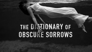 dictionaryofobscuresorrows--0001--teaser--large.thumb